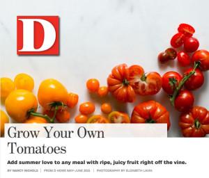 D Home Magazine & Gorji's Panzanella Salad.