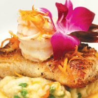 Seared cod & shrimp served at Gorji Restaurant in Dallas and Addison, TX, a fine dining, romantic eatery.